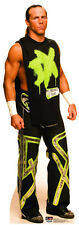 WWE Shawn Michaels Lifesize CARDBOARD CUTOUT standee standup C636