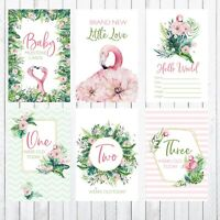 Baby Milestone Cards, 4x6 Photo Prop, 33 cards, Flamingos, Greenery