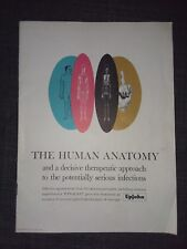 New listing The Human Anatomy pamphlet with cut away pages, Panalba promotional, Upjohn