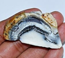 101.10 Ct Natural African Dendrite Opal Specimen Rough Top Quality