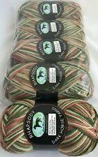 Lot of 5 Dark Horse Rhapsody 205yd Yarn Skeins #153 Rose Cream Green Merino Wool