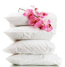 Goose Feather and Down Quad Pillow Pack New