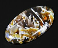 53 Ct Huge Top Natural Turkey Pseudomorph Stick Agate Oval Cabochon Gemstone A81