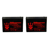 GT Shockwave 12V 10Ah Replacement Electric Scooters Battery by Neptune - 2 Pack