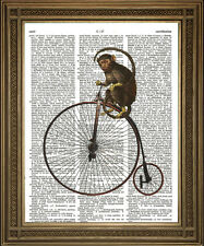 MONKEY RIDING PENNY FARTHING BIKE: Antique Dictionary Page Victorian Art Print