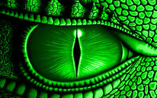 Framed Print - Giant Eye of a Green Dragon (Picture Poster Animal Lizard Art)