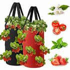 2 Pack Strawberry Hanging Planters for Outdoor Plants Gardens Upside Down Pla...