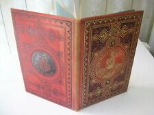 STAHL : un drole de chien Cartonnage Hetzel 1882