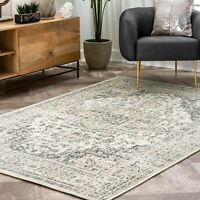 nuLOOM Traditional Vintage Tanith Area Rug in Cream