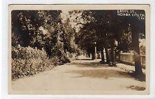 GROVE ST, NEVADA CITY: California USA postcard (C13227)