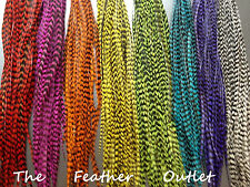 500 Piece Feather Hair Extensions Bulk Wholesale Natural Real Colors ALL GRIZZLY