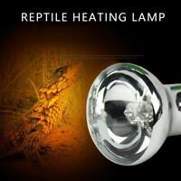 UVA E27 Reptile Heat Bulb Lamp Lighting Arcadia Basking Spotlight Solar E0X2
