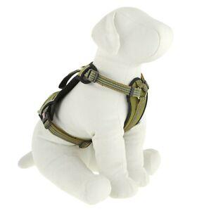 KONG Waste Bag Comfort + Reflective Dog Harness GREEN SIZE M MEDIUM w/ Pocket