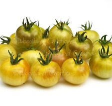 Napa Chardonnay Blush Cherry Tomato Seeds Organic Heirloom Yellow Fruit USA