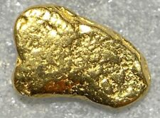 Beautiful Alaskan Natural Placer Gold Nugget .173 grams Free Shipping! #D780
