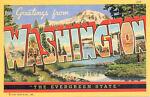 Paperzilla Vintage Postcards & More