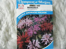 SEEDS T&M FLOWER    MONARDA T&M SUPERB MIXED SEED RRP £2.99