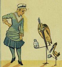 D. Gordon's Too Too Dry Goods Lady Anthropomorphic Mom Bird Baby Bird P99