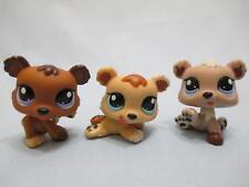 Littlest Pet Shop Lot 1554 1555 1556 Baby Bear Triplets