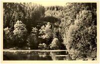 Finsterbergen Thüringer Wald DDR Postkarte 1955 Partie am Brandleiteteich Wald