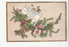 Carroll Southard & Co Draperies Rochester NY Pink Flowers Ferns Vict Card c1880s