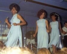 """Diana Ross and the Supremes 10"""" x 8"""" Photograph no 339"""