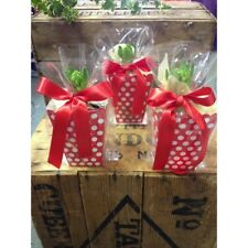 16 x Polka Dot Boxes, Cellophane Bags and Red Ribbon - Perfect for Christmas