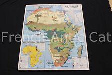 B968 Carte scolaire vintage Afrique Europe economique animaux pop MDI 91*79cm