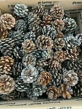 Pine Cones, Seconds, Imperfect, Red Pine Cones, One Box, Approximately 275 Cones