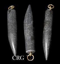 "Black Tourmaline Horn Pendant w/ Gold Bail 1.75"" (HO22DG)"