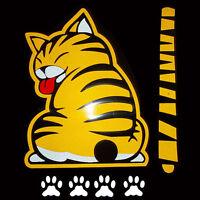 Gelb Auto Aufkleber Gelbe Katze mit Schwanzwedeln Auto Heckscheibe Aufkleber de