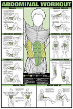 ABDOMINAL WORKOUT WALL CHART Professional Fitness Training Gym Poster
