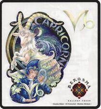 Capricorn Zodiac Fairy Stickers Car Decals Jody Bergsma astrology symbol sticker