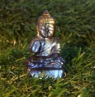 64.65 Cts Natural Labrodorite Top Quality Hand Carved Lord Buddha Figure RA-1
