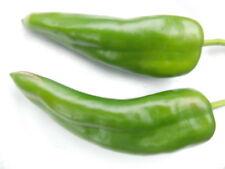 30++ Anaheim Chili Hot Pepper Seeds NON-GMO Mild