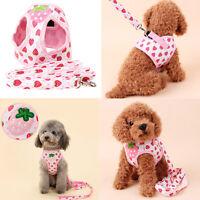 Pet Dog Cat Puppy Mesh Harness Walk Collar Safety Vest Strap Lead Leash Belt New