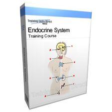 Système endocrinien ANATOMIE CD Livre cours de formation