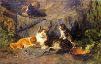 Oil painting julius adam - the proud mother happy cats family free shipping cost
