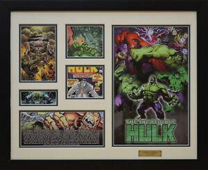 The Incredible Hulk Marvel Comics Limited Edition Framed Memorabilia (w)