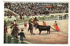 Piquer on Horse Back Bull Fighting Photo Postcard 1920s / Spain