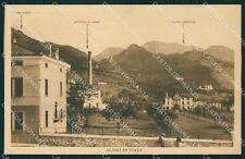 Belluno Alano di Piave cartolina QT1314