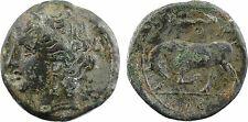 Italie, Sicile, Syracuse, Agathoclès, bronze AE19, IE à l'exergue - 19