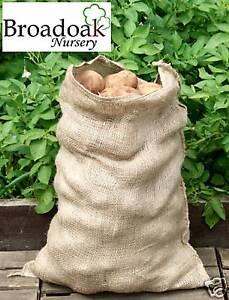 Jute Hessian Potato Veg Storage Sack HALF SIZE 10-15kg, Hessian Sack