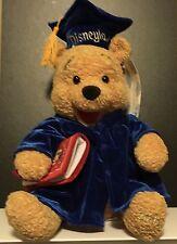 "DISNEY DISNEYLAND Resort Graduate Pooh 2001 12"" Plush Winnie The Pooh Blue"