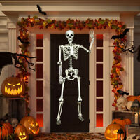 5.4ft Halloween Skeleton Life Size Realistic Full Body Gift w/ Movable Joints