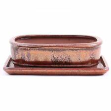 creme Schale eckig 18,5 x 14,5 x 6,5 cm Bonsai 22334