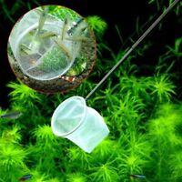 Square Round 3D Aquarium Small Betta Tetra Fish Shrimp Catching Net Nice