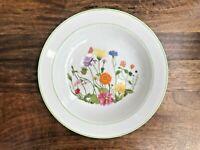 Denby Pottery China Rimmed Soup Bowl, Dessert Bowl. Wonderland 1974.*Unusual*