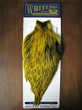 Fly Tying Whiting American Rooster Cape BLW/Yellow #A