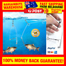 Amazing Automatic Spring Loaded Hook Setter Fishing Device